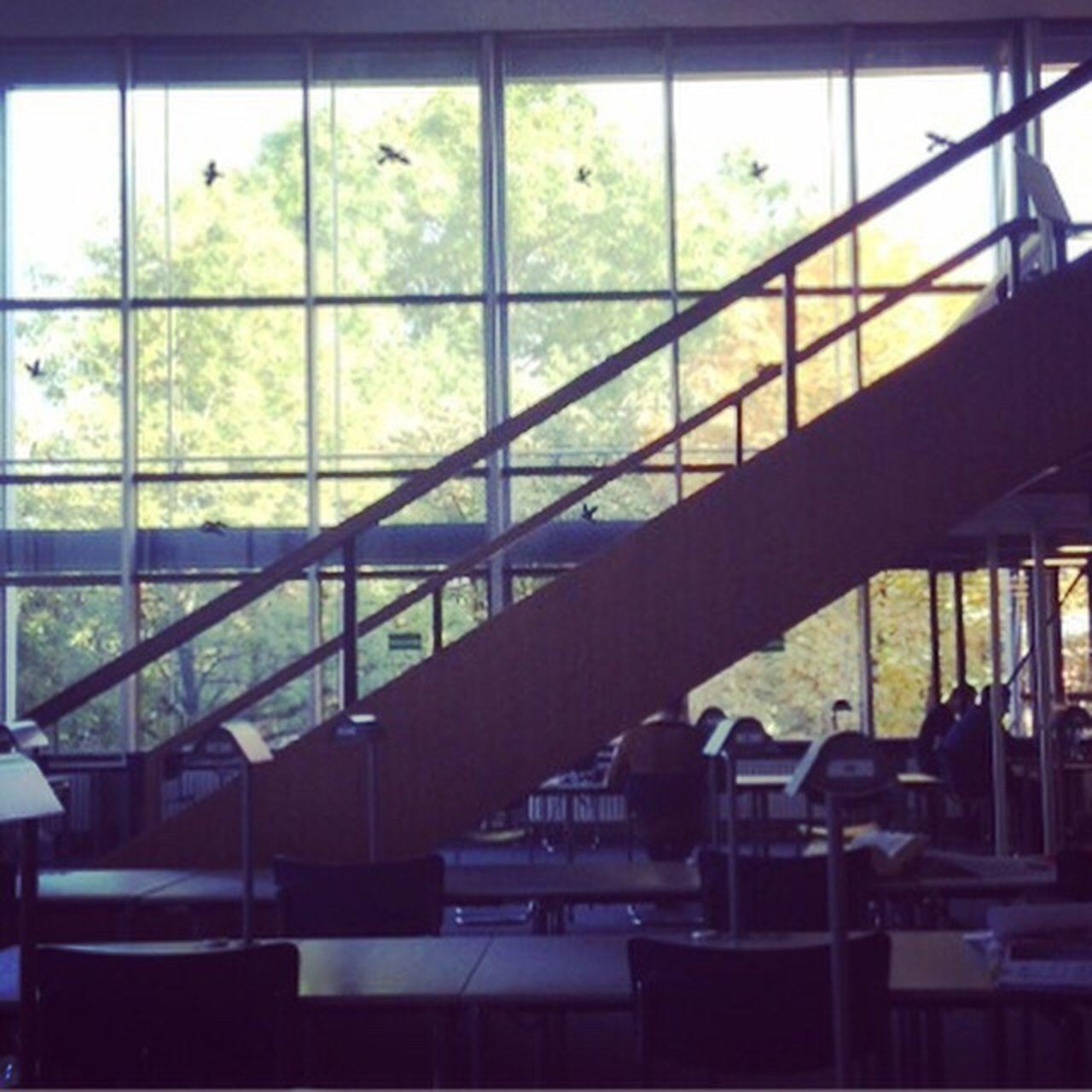 Bayrische Staatsbibliothek Stabi