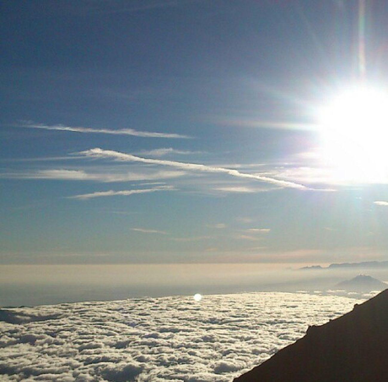 One day at puncak semeru... Hikingadventures indonesia indah..