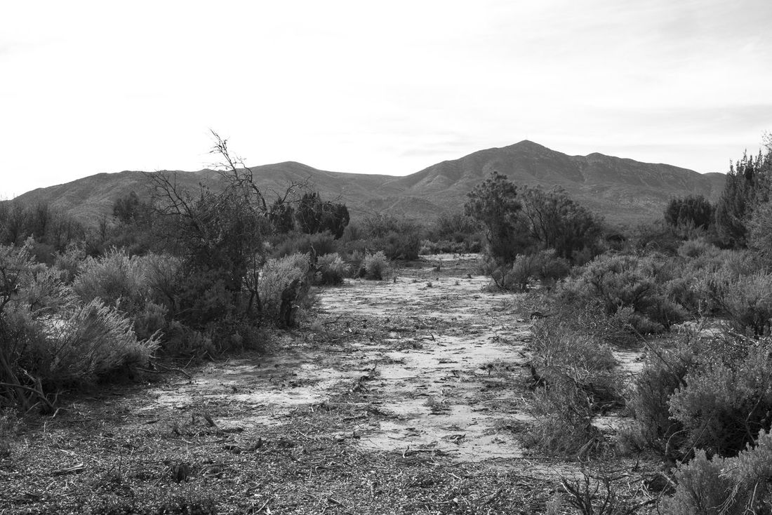 Beauty In Nature Black And White Landscape Diminishing Perspective Mountain No People