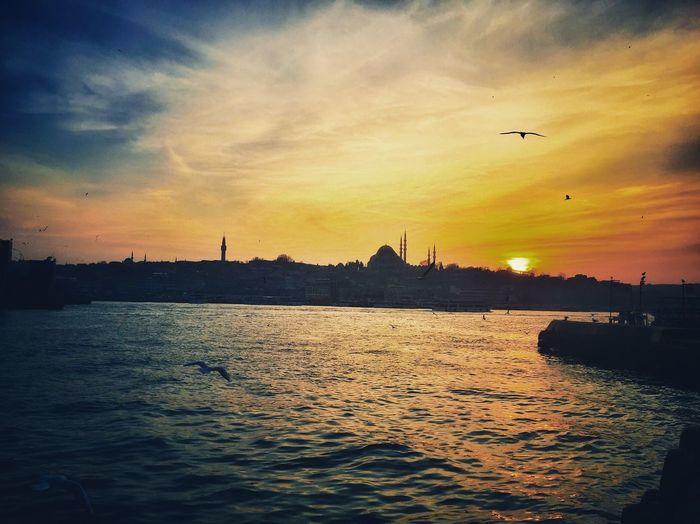 İstanbul istanbul olalı! Yalnızlık Kızıl Gün Batımı Istanbul Turkiye çünküdostluk Ebedi Dostluk Rakıcandır