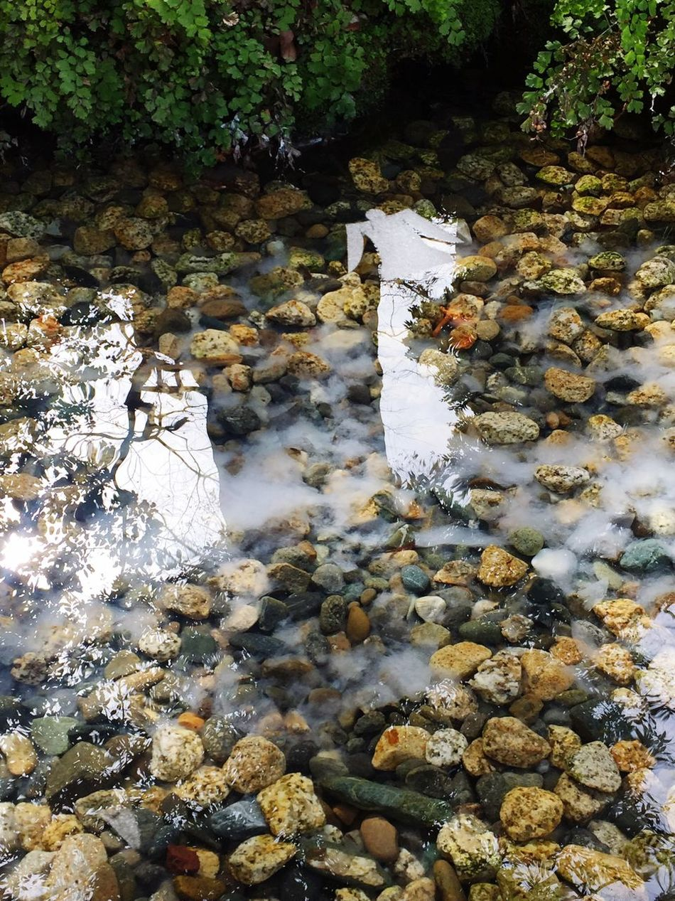 Peace Water Nature Stones Peace JapanLife Japan KAWAGOE Clearwater Beautiful Happyvibes First Eyeem Photo Shrine