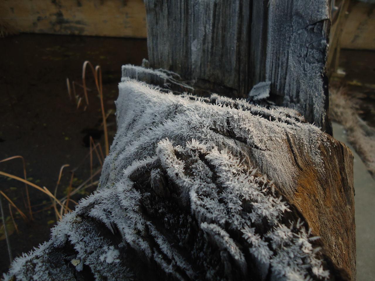 Kashmir , India Planks Of Wood Snow Snow ❄ Snowfall Srinagar Kashmir Winter Wood
