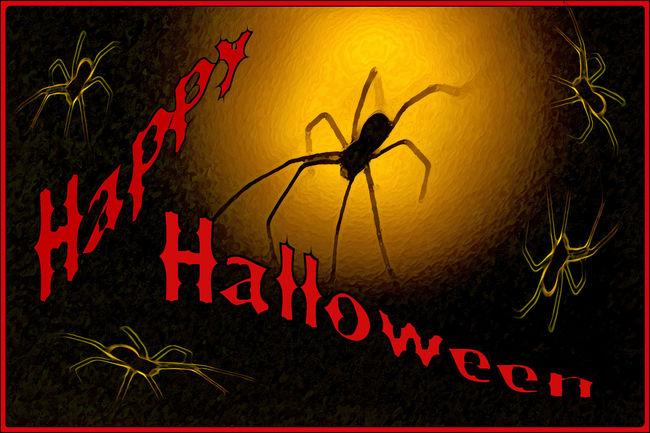 Happy Halloween Spider Artrave Creativity Happy Halloween No People Orange Color Photo Art Red Scary Spider Spooky Text Halloween