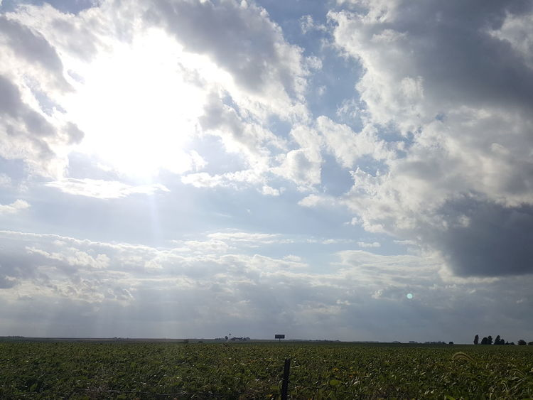 No filters Remote Landscape Tranquil Scene Field Tranquility Scenics Beauty In Nature Sky Cloud - Sky Nature Non-urban Scene Sunbeam Cloud Horizon Over Land Sun Day Growth Cloudy Outdoors Blue