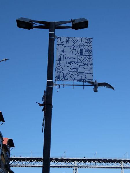 Bird Blue Bridge Clear Sky No People Sky Street Lamp Streetphotography_fujifilm