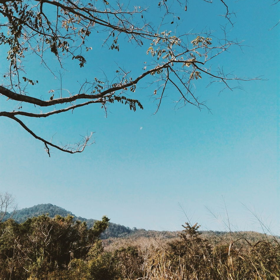 Valentine Day Couple Love Sky Sunshine Winter Forest Lake View Somewhere Only We Know Goodday Memories Norththailand Chiangmai Thailand