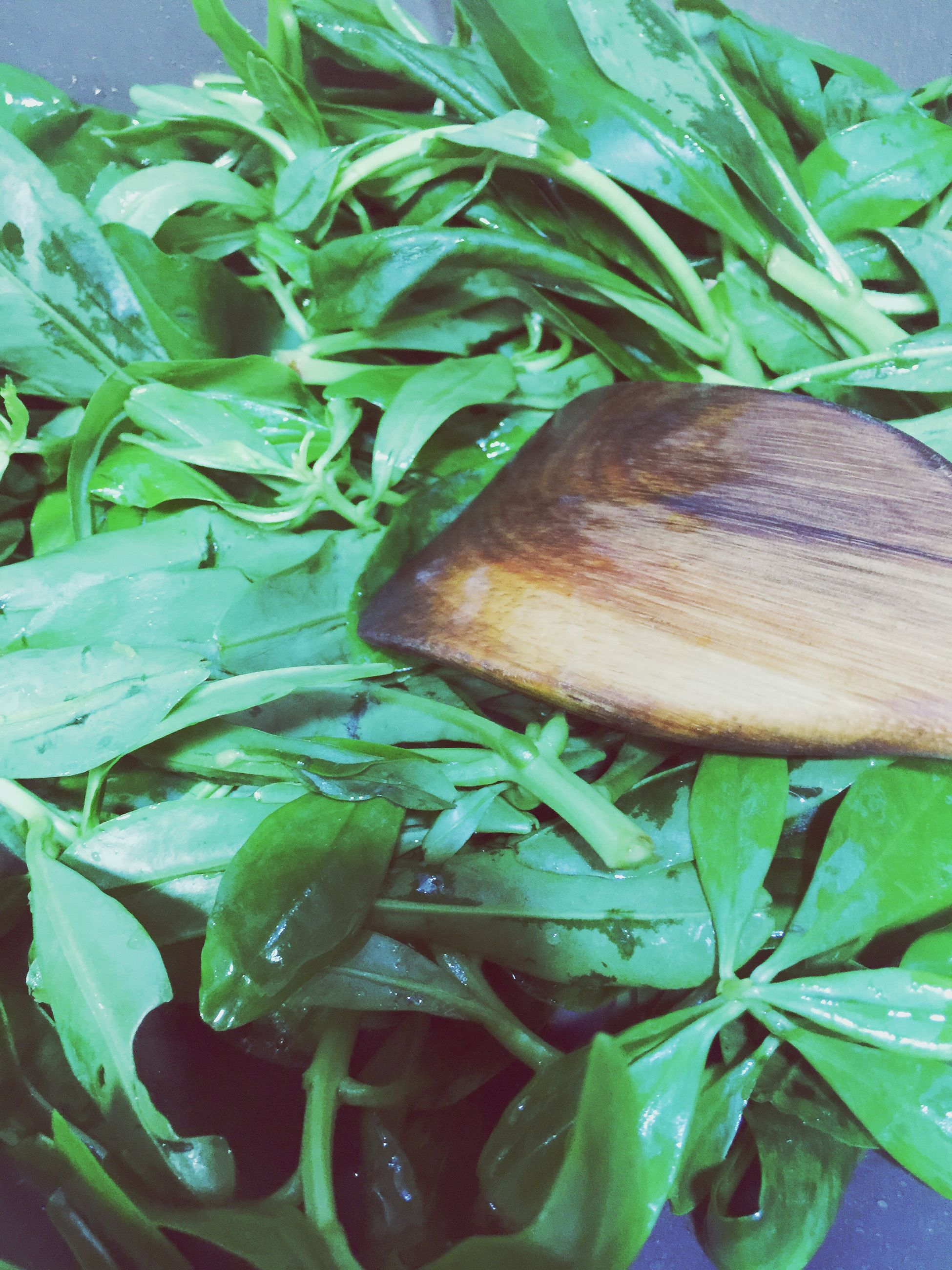 leaf, green color, food and drink, close-up, freshness, food, healthy eating, plant, growth, high angle view, vegetable, no people, nature, leaves, still life, indoors, day, leaf vein, green