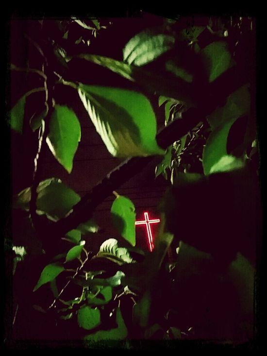 木々越しの十字架。
