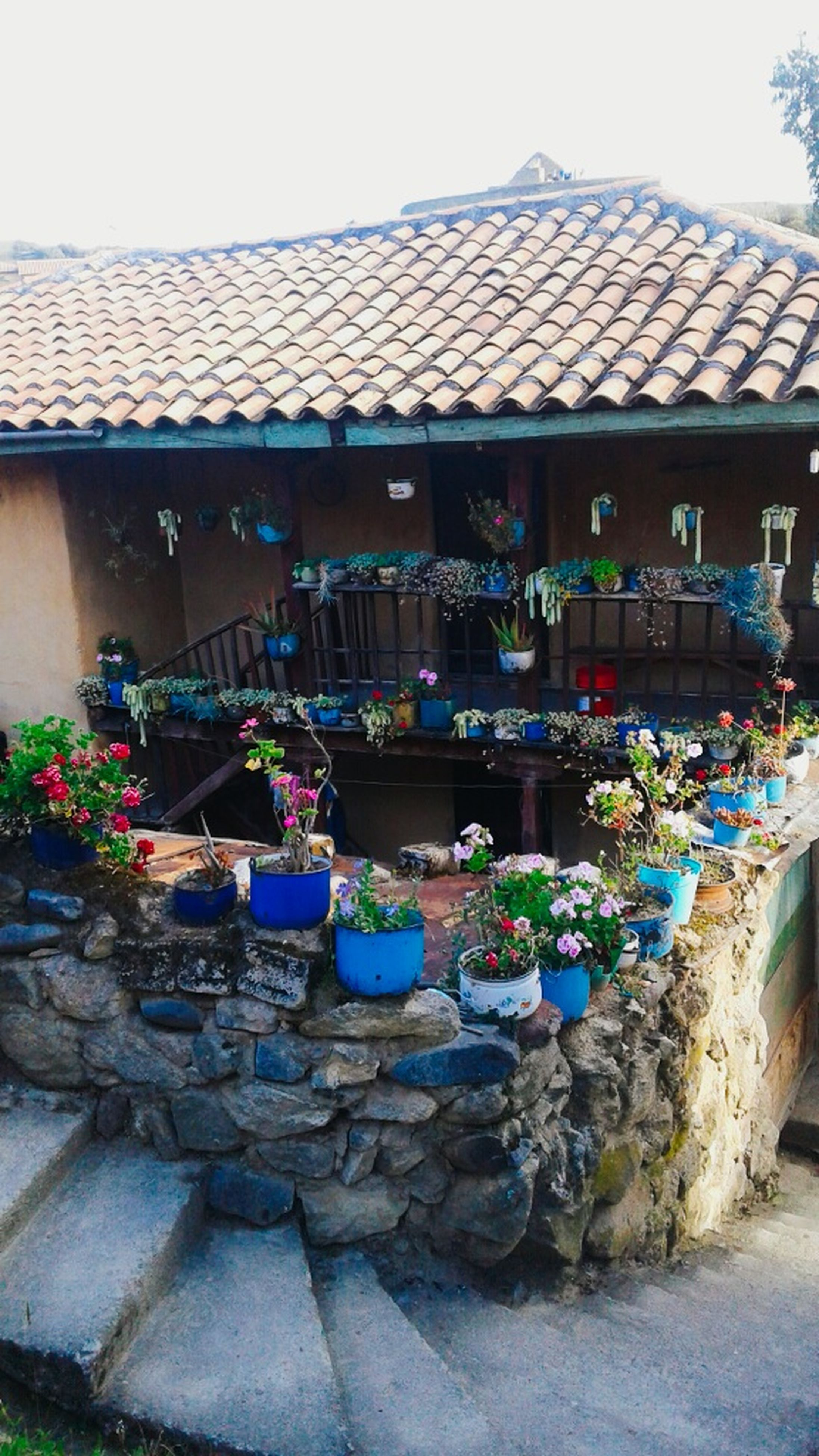 built structure, building exterior, architecture, flower, plant, potted plant, house, roof, variation, religion, retail, day, multi colored, outdoors, freshness, flower shop, no people, fragility, outside