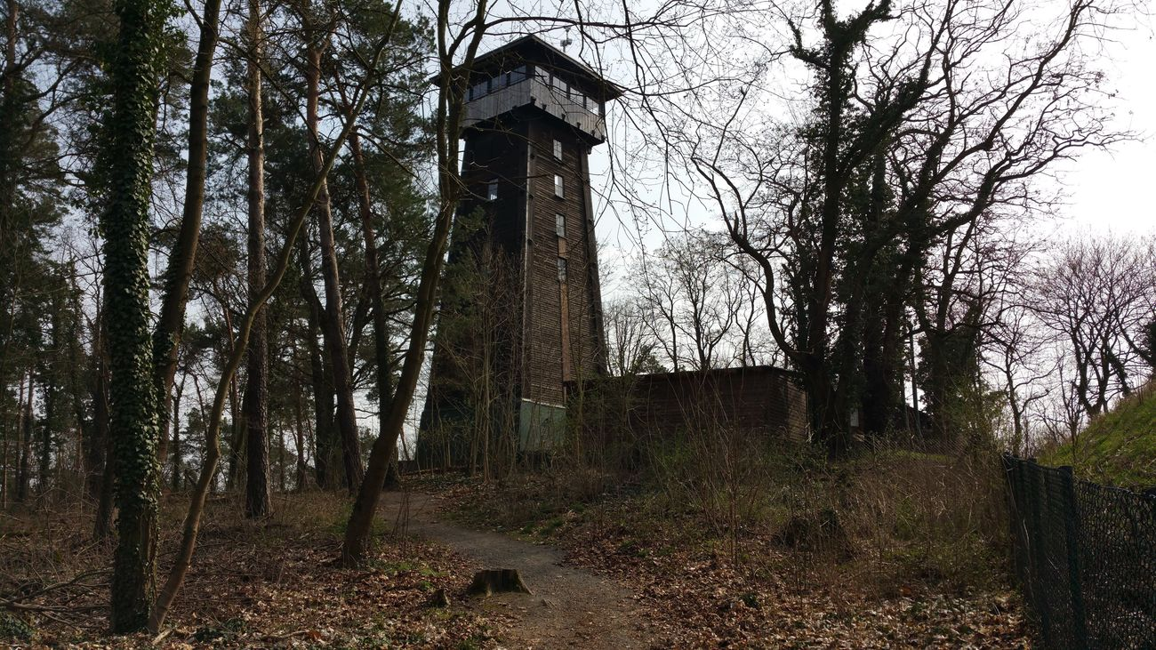 Observation Tower Kranichsberg Woltersdorf Bei Berlin , Wood Tower Tower Brandenburg Nature Nature Photography Landscape Landscape_photography Hello World Check This Out Relaxing Taking Photos ohne Filter 2016