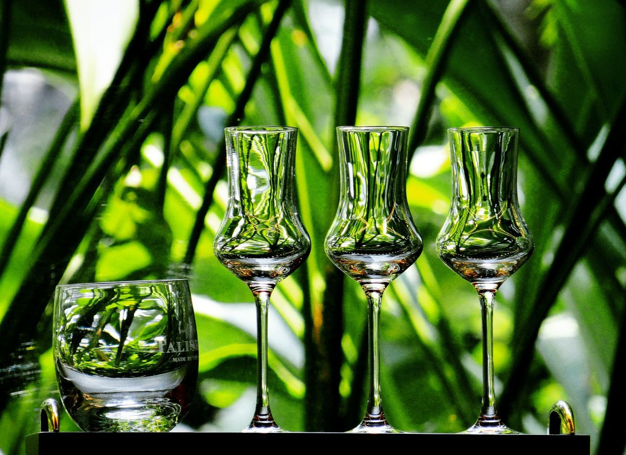 EyeEmBestPics EyeEm Gallery Eyeemphotography Display Case Champagne Glasses Check This Out Photograph Photography Hotel Lobby EyeEm Best Shots Glasscollection Bangkok Thailand Reflection Greeneffect Greenery Gettyimages Getty Glass Reflection Glass_collection