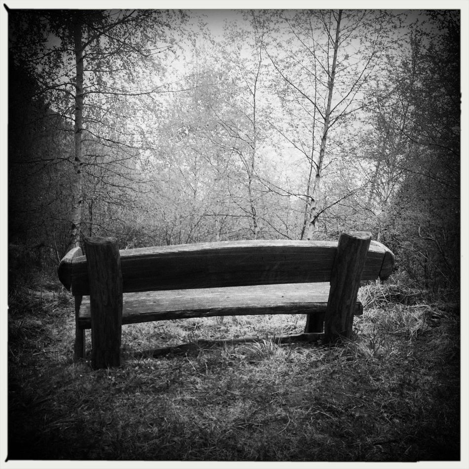 A quiet place Hipstamatic Blackandwhite Bench