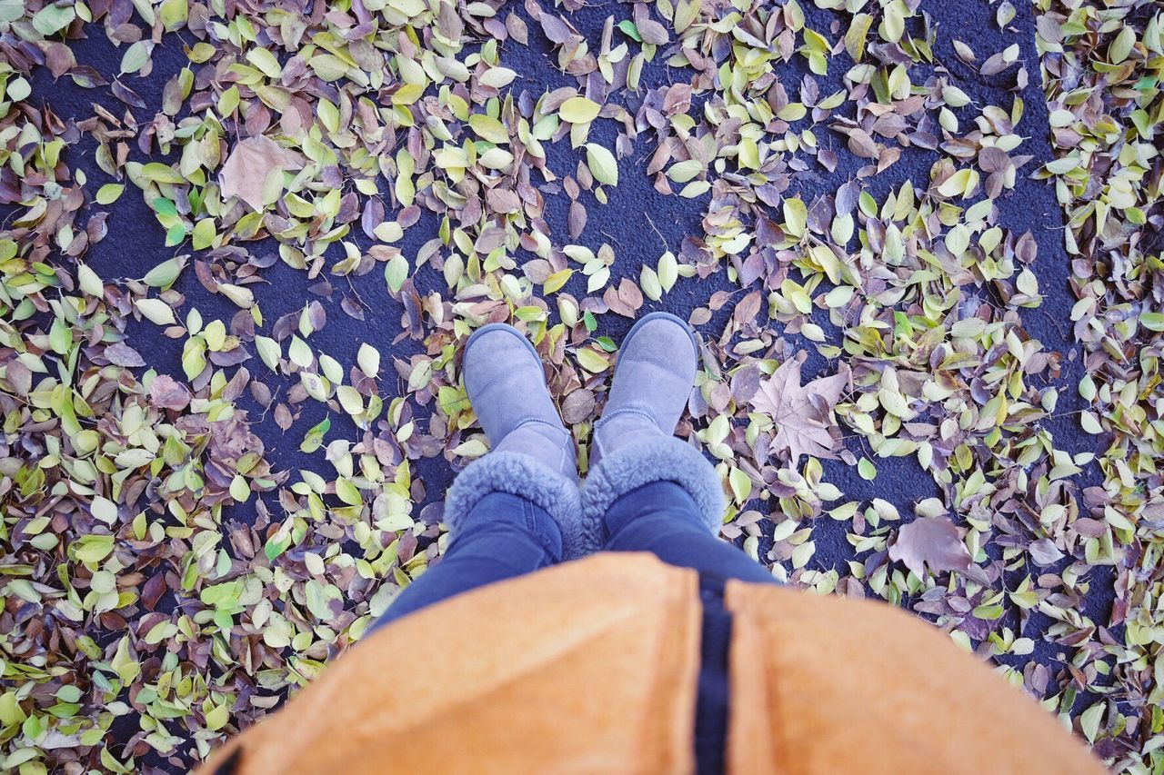 low section, shoe, human leg, personal perspective, standing, leaf, one person, real people, high angle view, human body part, outdoors, day, men, nature, close-up, people