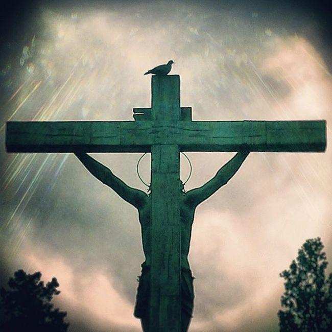 Cristo de las Mieles BuscandoaMachín The Photojournalist - 2016 EyeEm Awards