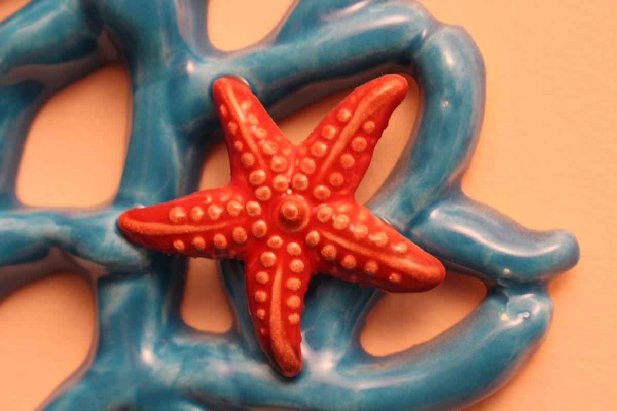 Grottaglie Ceramiche Stellamarina Seastar Blue Red