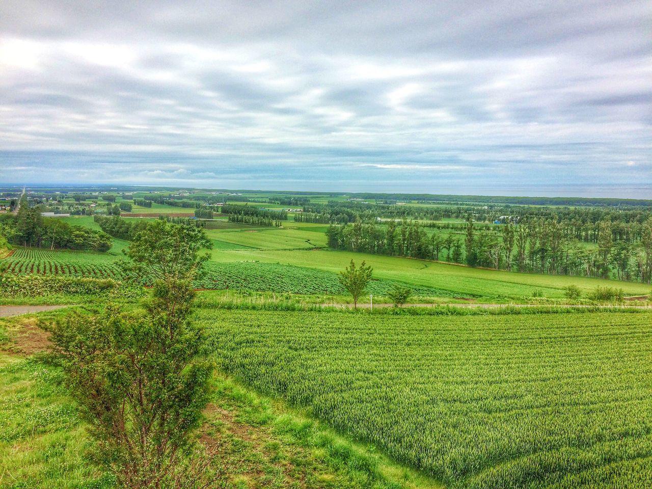 Countryside Hokkaido EyeEm Nature Lover Country