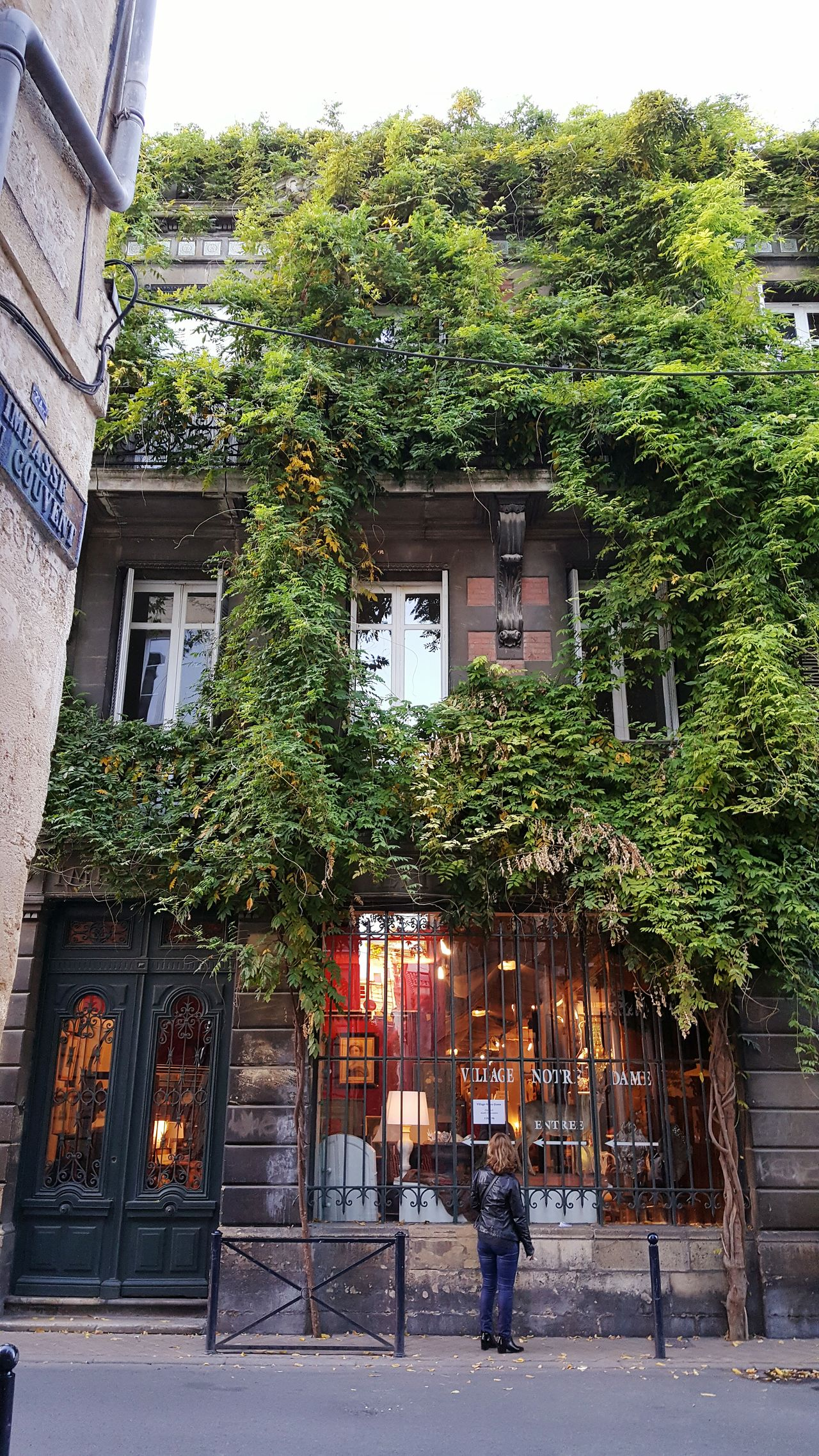 Boutique Quartier des Chartrons Architecture Building Exterior Green Color City Life Growth Outdoors Creeper Plant Nature Old Shop Shop TOWNSCAPE Cityscape Cityscapes City Life Architectural Feature Architecture_collection Architecture Façade City Street Street Photography Streetphotography