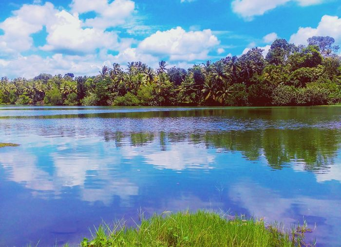 The week on eyeem Cloud - Sky Lake Reflection Nature Water Blue Outdoors Scenics Sky Landscape Tranquility Tree No People Beauty In Nature Day