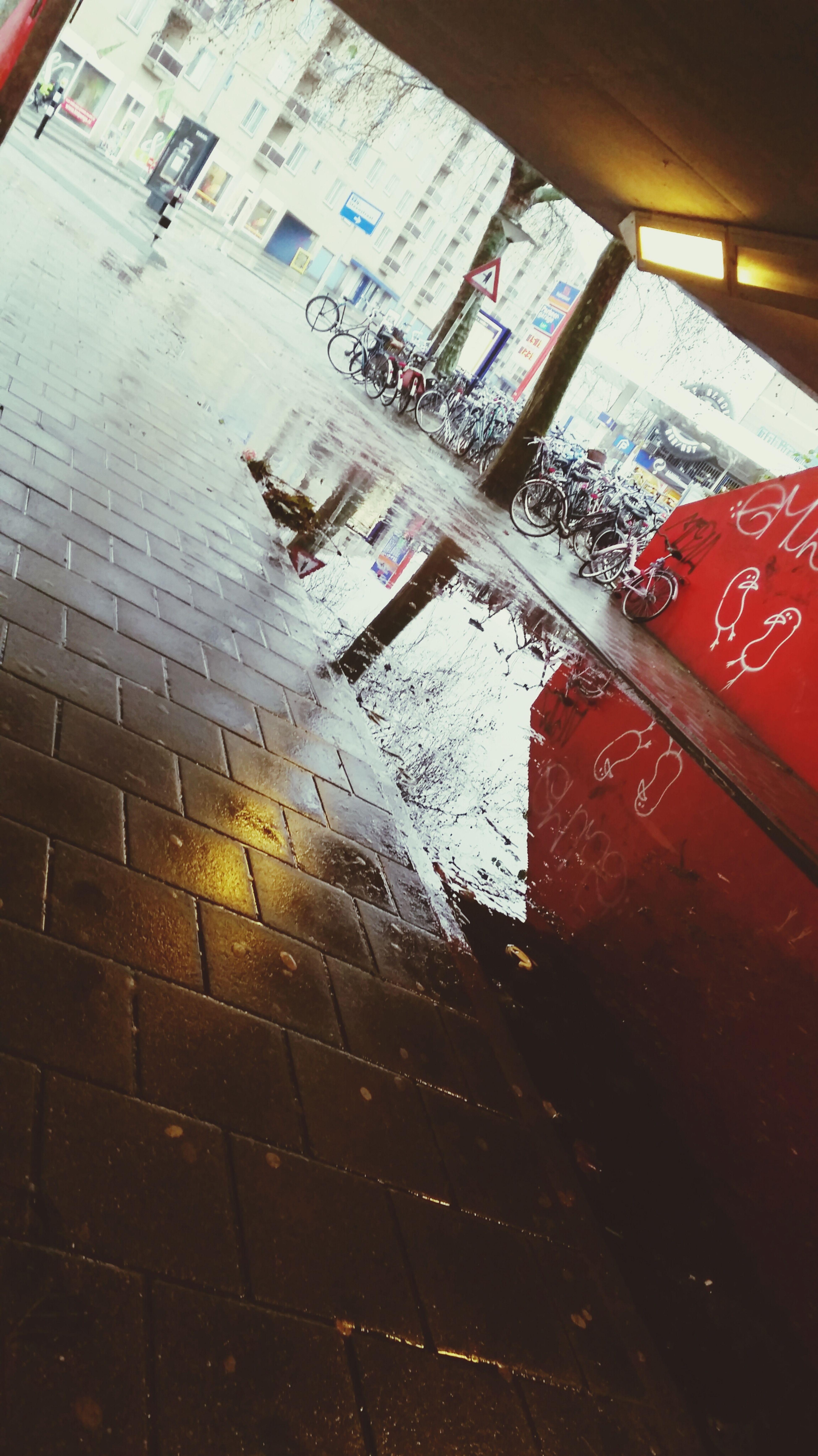 RainyRainy Thenetherlands ColdNotSoCold