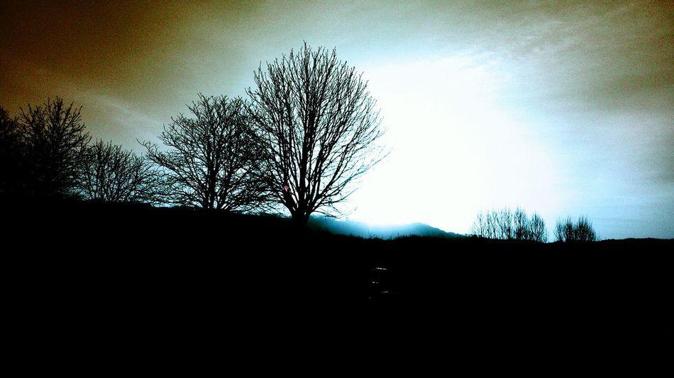 Pour ne pas être analphabète du bonheur Lumiere Divine émerveillement From My Point Of View Sky_collection Landscape Naturemakesmehappy