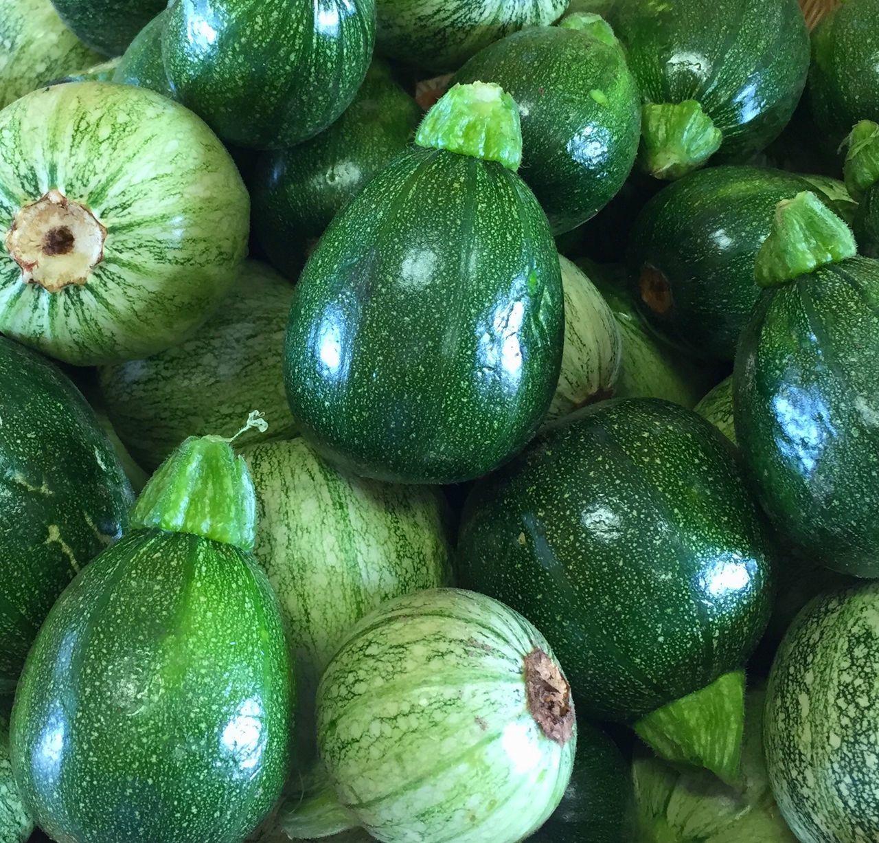 Small round Zucchini at Farm Markets