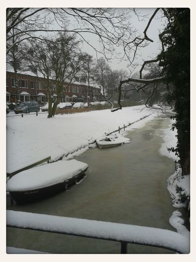 Snow Canals Of Leiden