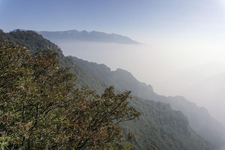italia Beauty In Nature Day Fog Gebirge Haze High Angle View Italia Italie Italien Italy Italy❤️ Italy🇮🇹 Landscape Mist Montagna Mountain Mountain Range Nature No People Outdoors Scenics Sky Tranquil Scene Tranquility Tree