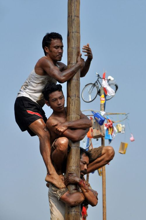 Areca nut tree climbing competition or panjat pinang is one of activities of the Indonesian people to celebrate independence day on August 17 Panjat Pinang Lomba Panjat Pinang Independence Day Indonesia Independen Day Kemerdekaan RI People 17 Agustus Lomba 17 Agustus