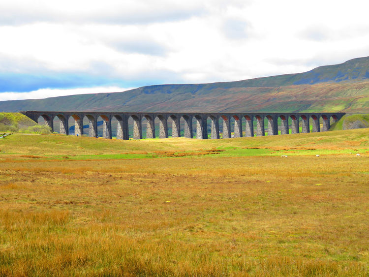 Bridge - Man Made Structure Landscape Ribble Valley Ribblehead Ribblehead Viaduct Ribbleheadviaduct Scenics Viaduct Viaducts Yorkshire Yorkshire Dales Yorkshiredales