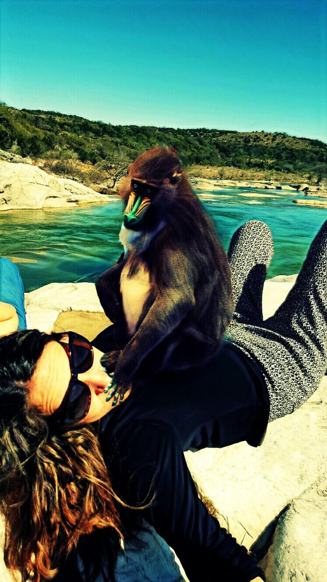 Animal Themes Monkey One Animal Mammal Ape Noir Layers And Textures Bizaare Dreamlike Surrealistic Surrealism Photography Unusal Scenes Surreal Rocks And Water Odd Portrait Contorted