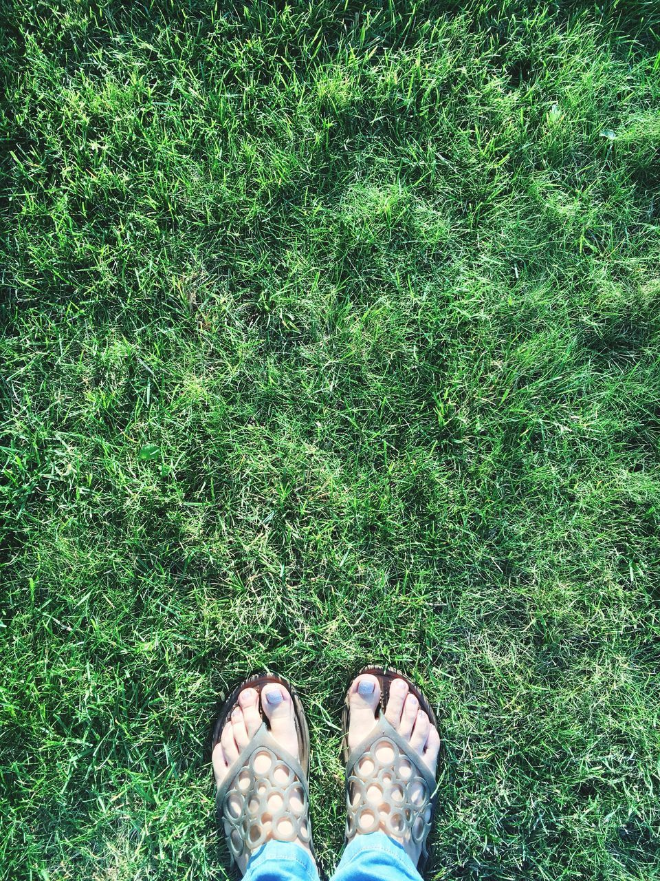 grass, low section, human leg, standing, green color, one person, personal perspective, high angle view, shoe, human body part, directly above, outdoors, day, field, real people, men, nature, women, adult, people