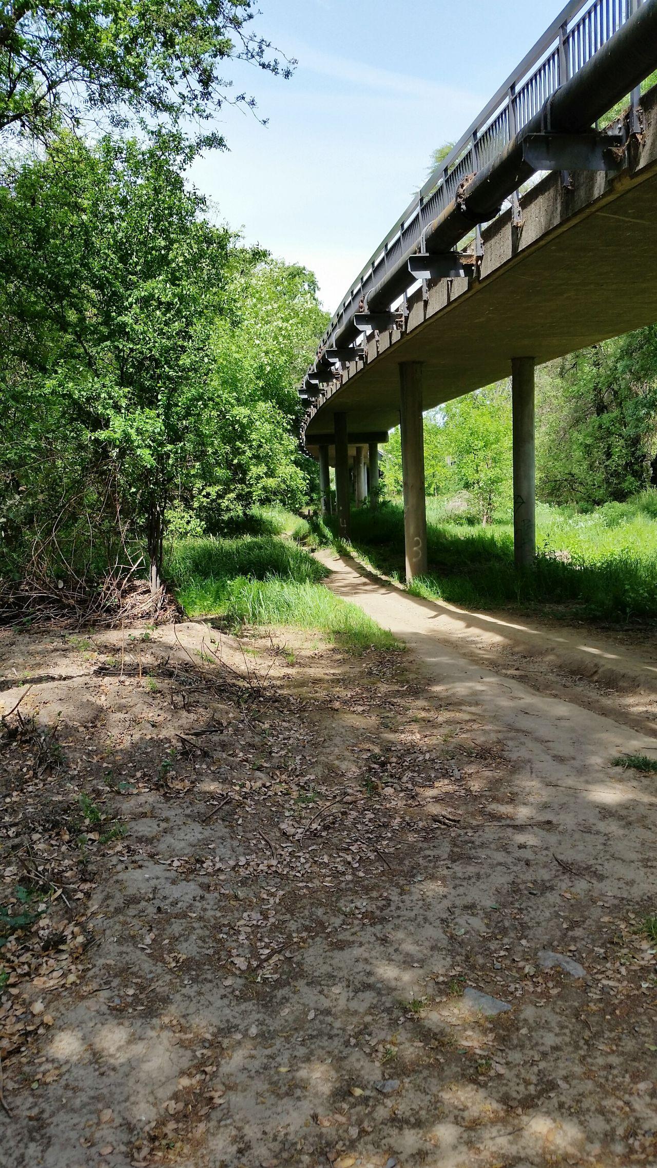 Bridge Trail Greenbelt Roseville, CA