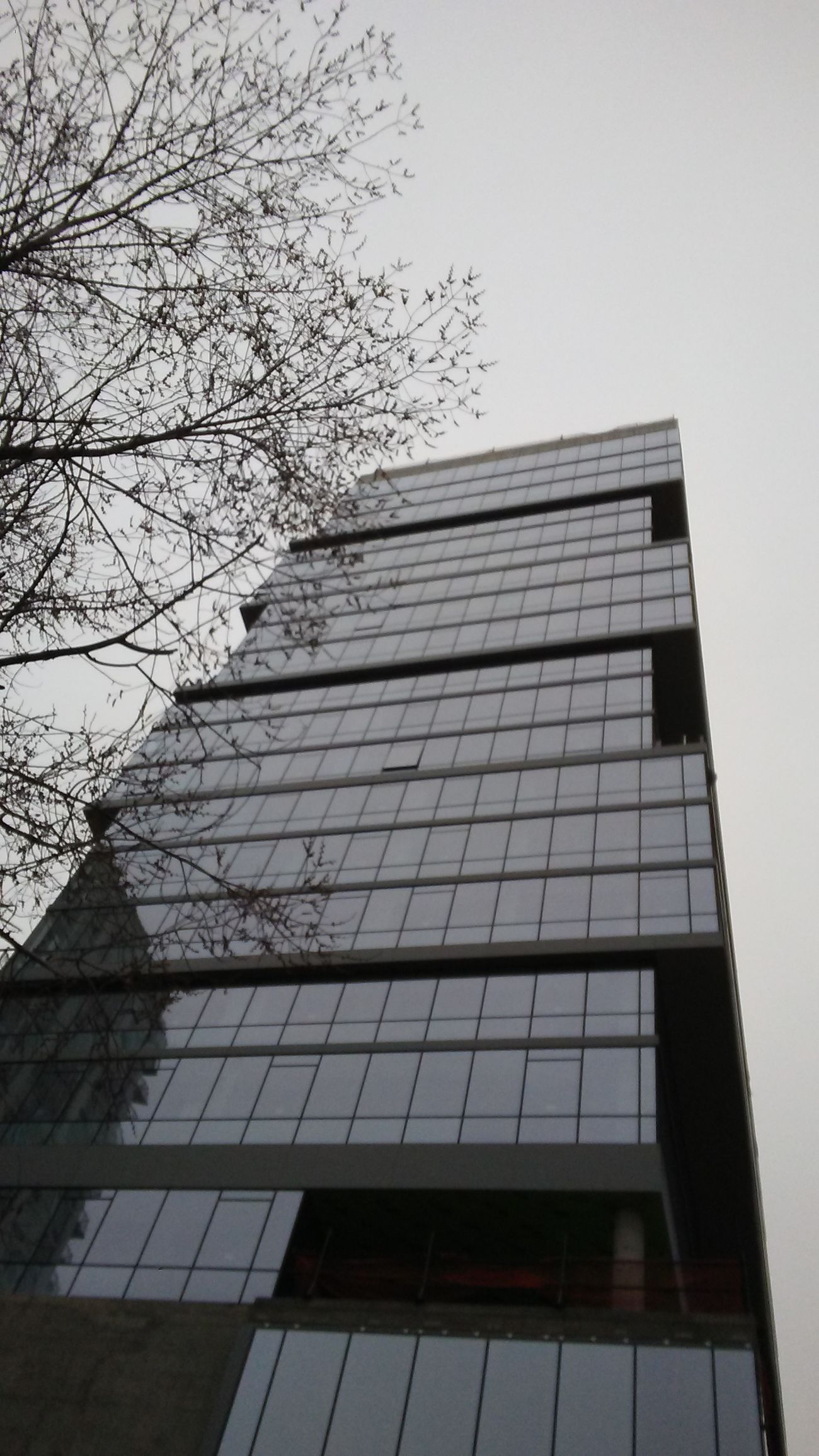 Architecture Building Exterior City Modern Built Structure No People Tree Skyscraper Low Angle View Outdoors Sky Reflection Tranquility Architecture Cluody_sky Glass - Material Glass Building