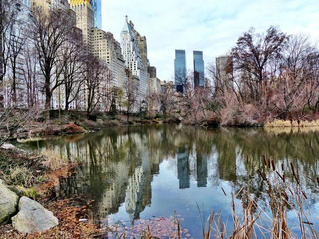 New York Central Park Central Park - NYC Manhattan USA USA Photos America Reflection Reflections In The Water Reflections Buildings Buildings & Sky