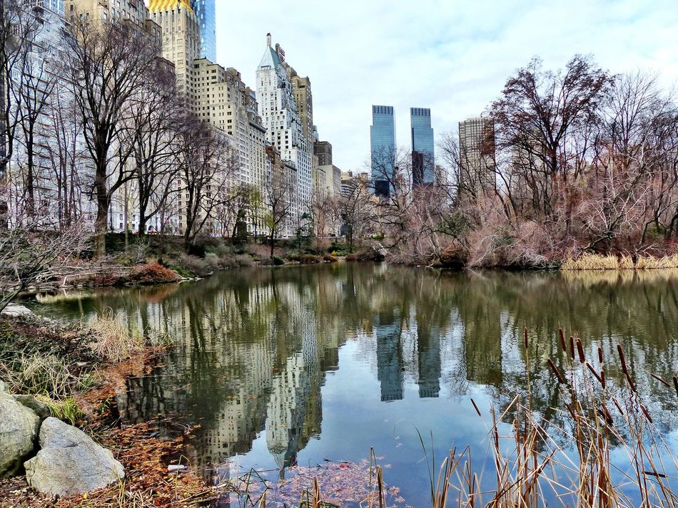 New York Central Park Central Park - NYC Manhattan USA USA Photos America Reflection Reflections In The Water Reflections Buildings Buildings & Sky