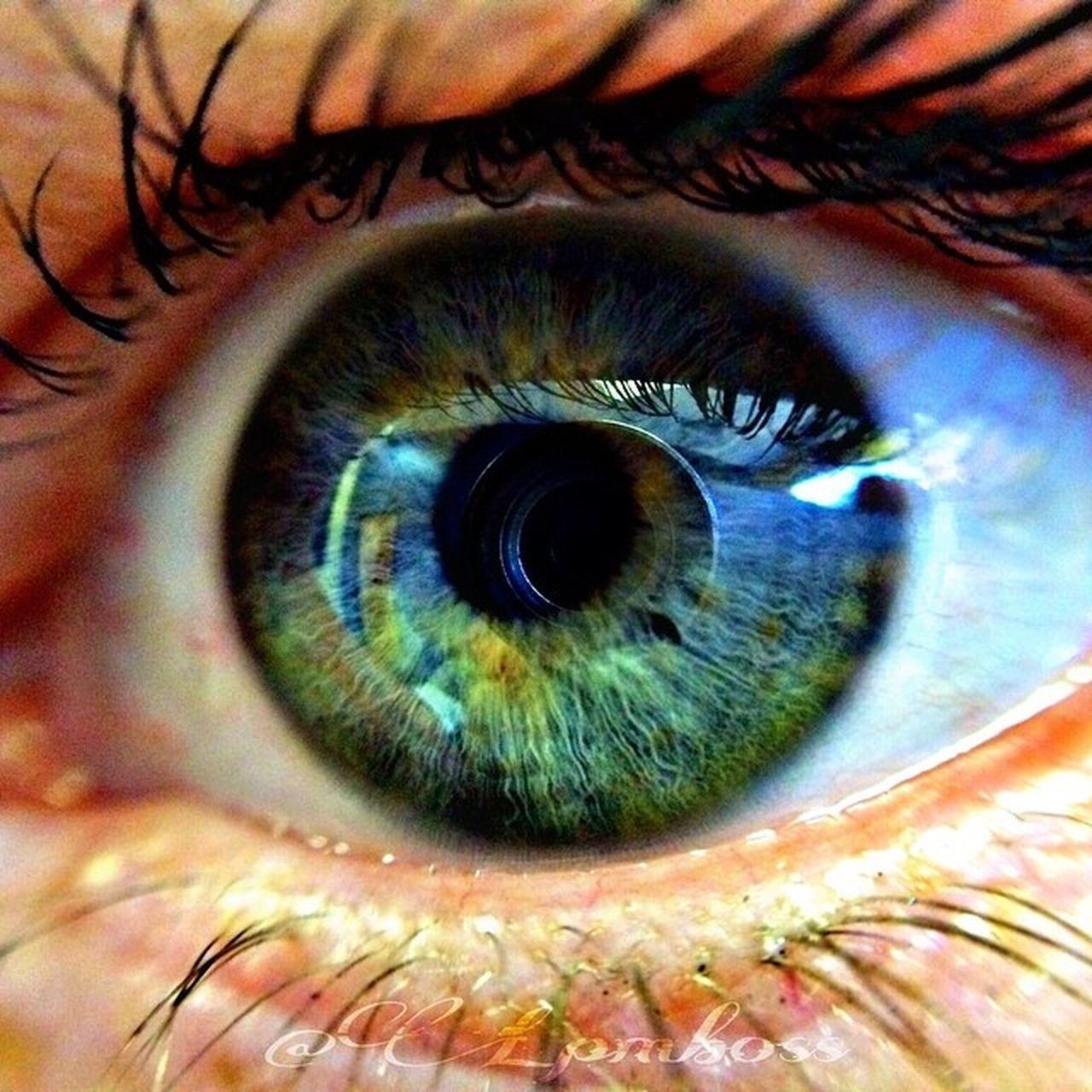 Eye see you Lpm Lpmboss Eye Greeneye