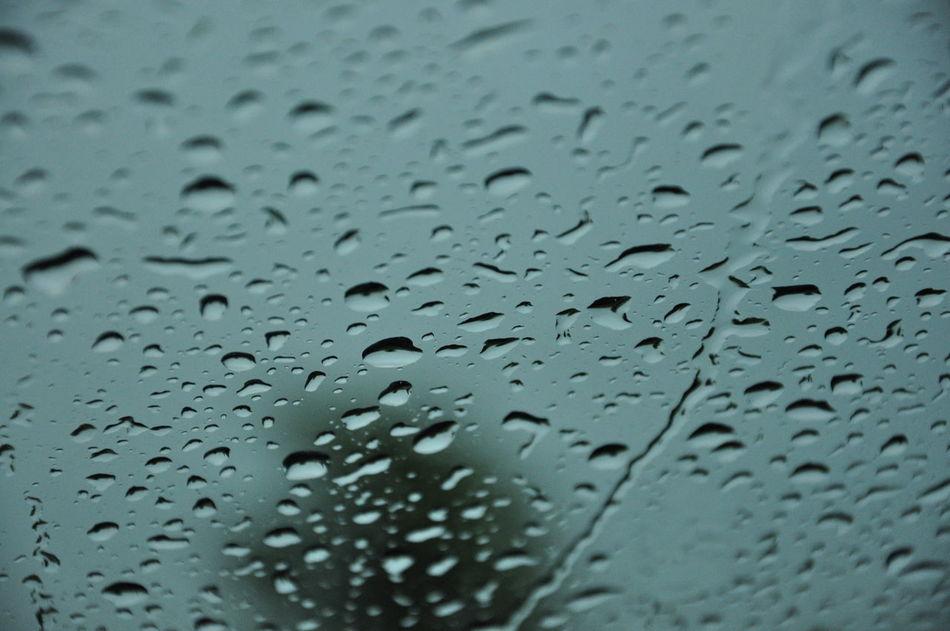 Backgrounds Close-up Day Drop Full Frame Indoors  Nature No People Rain RainDrop Rainy Season Water Weather Wet Window