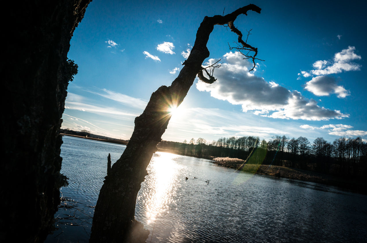Lake and dead tree with sun rays Angled Photography Angled View Beatiful Beauty In Nature Blue Sky Cloud - Sky Clouds Composition Creative Dead Tree Lake Nature Outdoors Pond Reflection Scenics Shadow Silhouette Sky Sun Sunrays Sunset Tree Water Waterfront