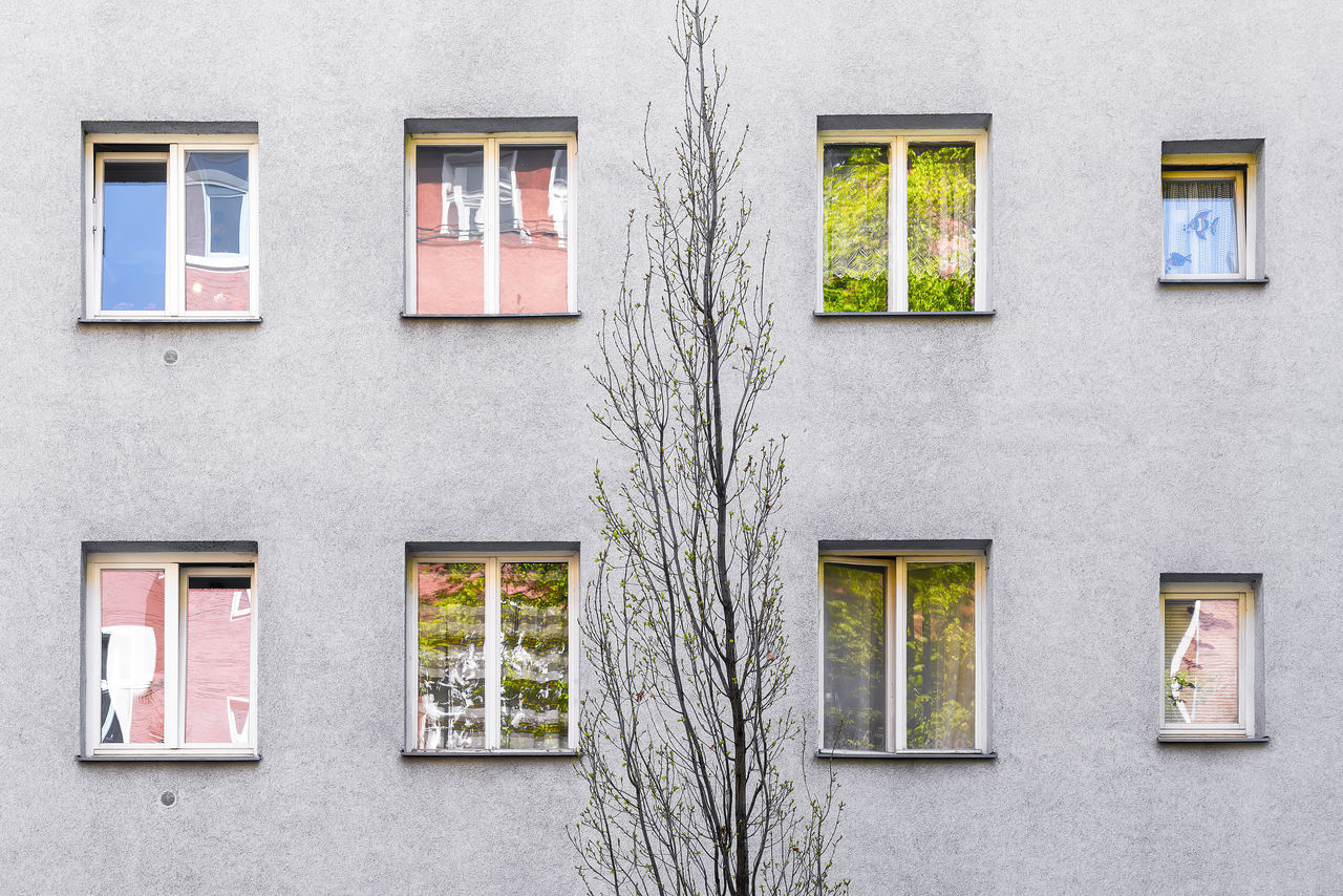 Apartment Architecture Berlin Building Built Structure Exterior Façade Flat Gentrification Living No People Opposites Outdoors Poor  Public Housing Reflctions Social Issues Sparse Tree Window