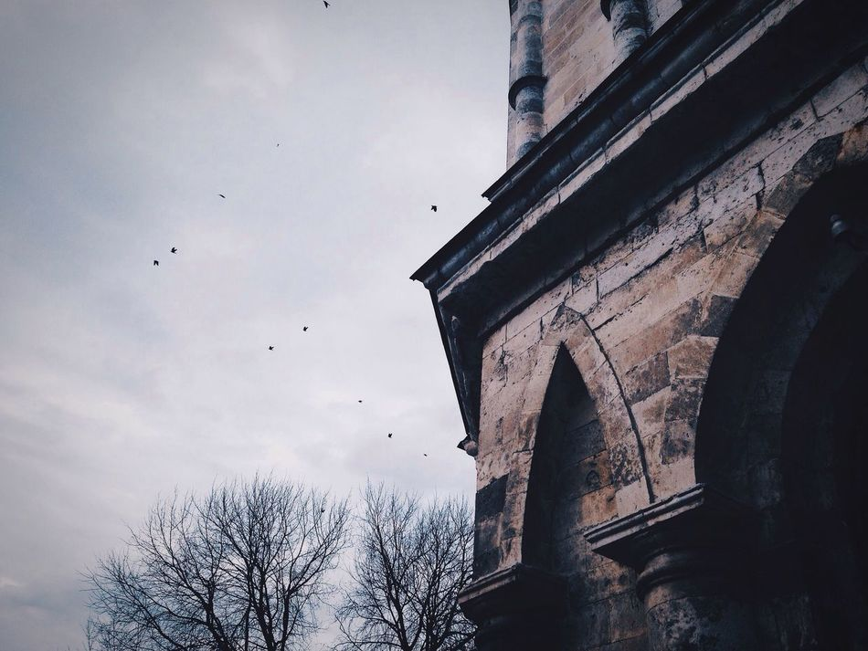 Beautiful stock photos of gothic, architecture, built structure, low angle view, building exterior