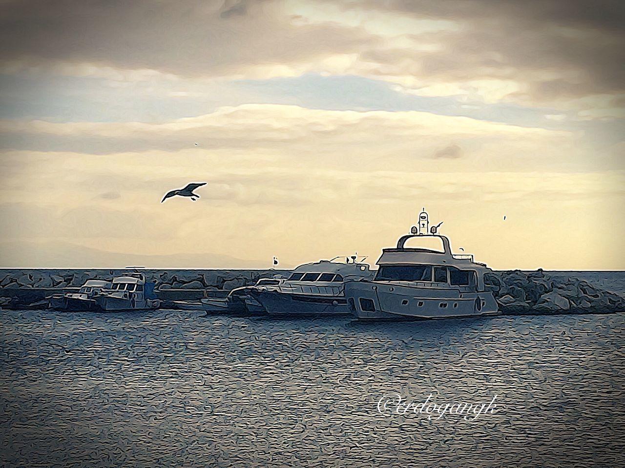 Nature People Watching Photooftheday Relaxing Photography Istanbul Yesilköy Beatiful Enjoying Life Love Sea And Sky