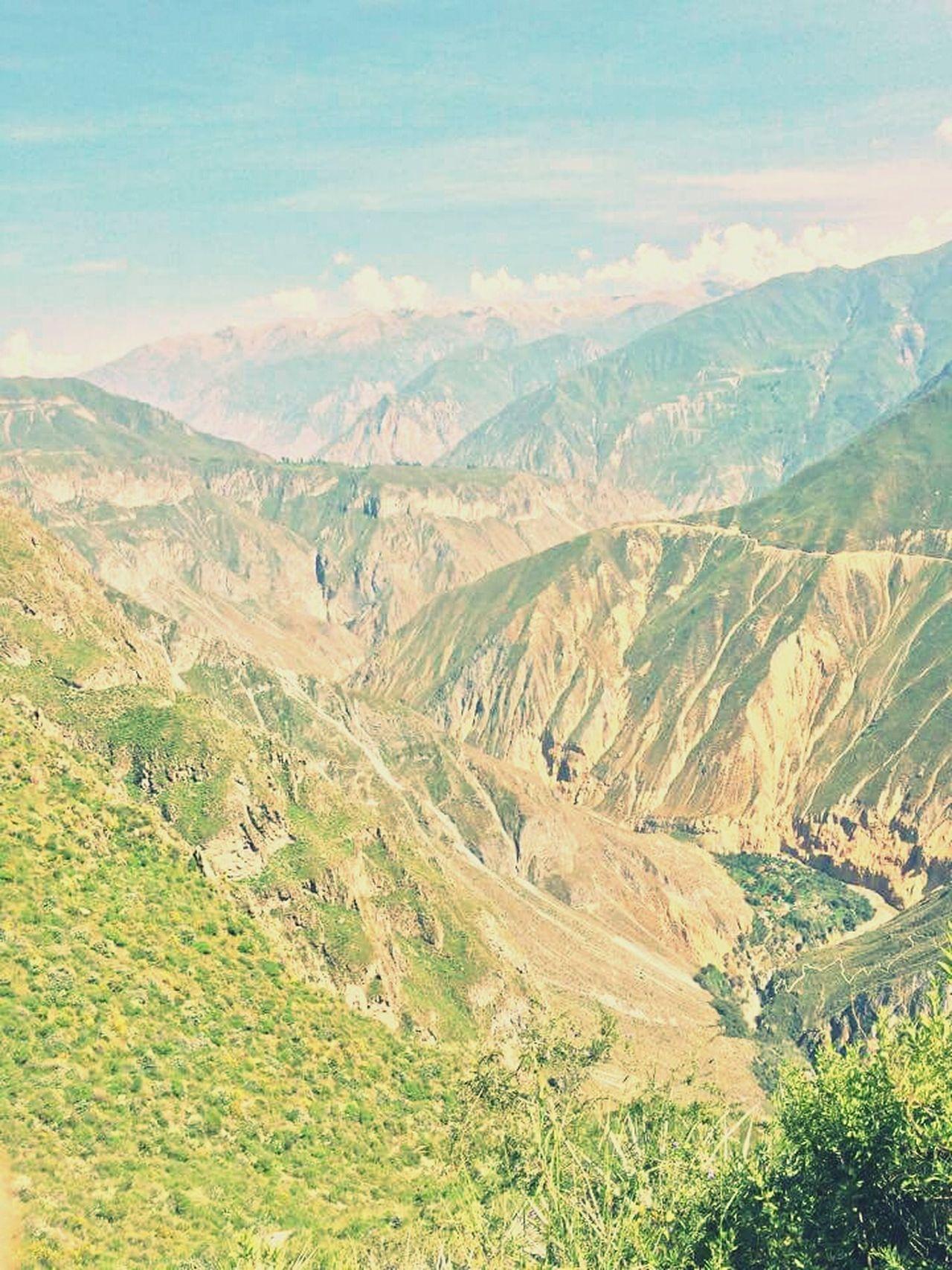 Canyon Del Colca Peru 2015  Colca Canyon Arequipa - Peru Deep High Altitude Mountain Cordillera De Los Andes Andesmountains