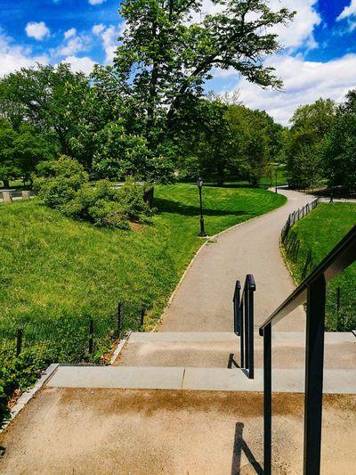 Windows XP Style lol RahimNoel Rahim New York NYC NY First Eyeem Photo Central Park - NYC Vivid ❤ Beautiful Random Green