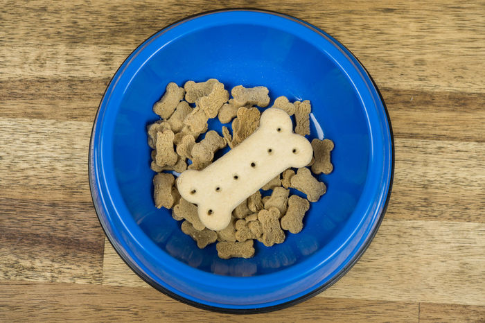 Cookies Dog Food Biscuits Blue Bowl Chewing Close-up Day Directly Above Dog Dog Bone Dog Treats Food Food And Drink Freshness Healthy Eating High Angle View Indoors  No People Ready-to-eat Table