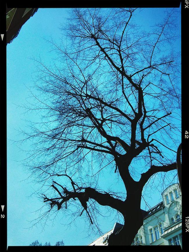 Strahlend blauer Himmel heute über F'hain... Walking Around Enjoying The Sun Friedrichshain Mittagspause