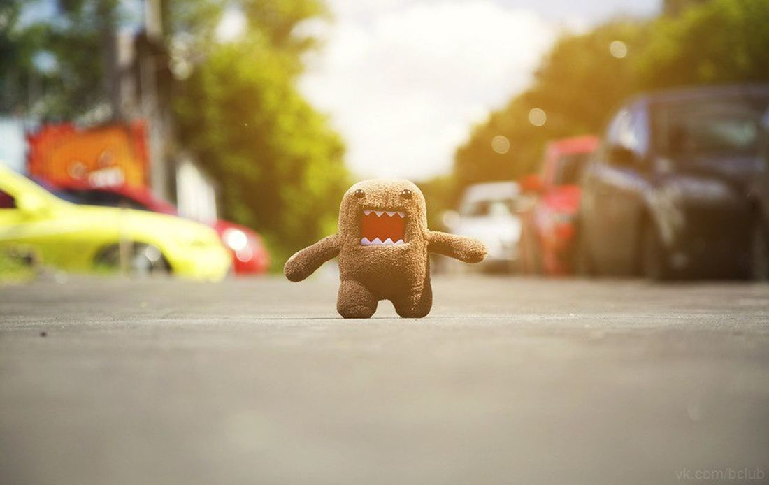 It is America. Domo kun. One Person Road Day Close-up City Domo Kun Domo ♥ Domo Swagg DOMO Japanese Style