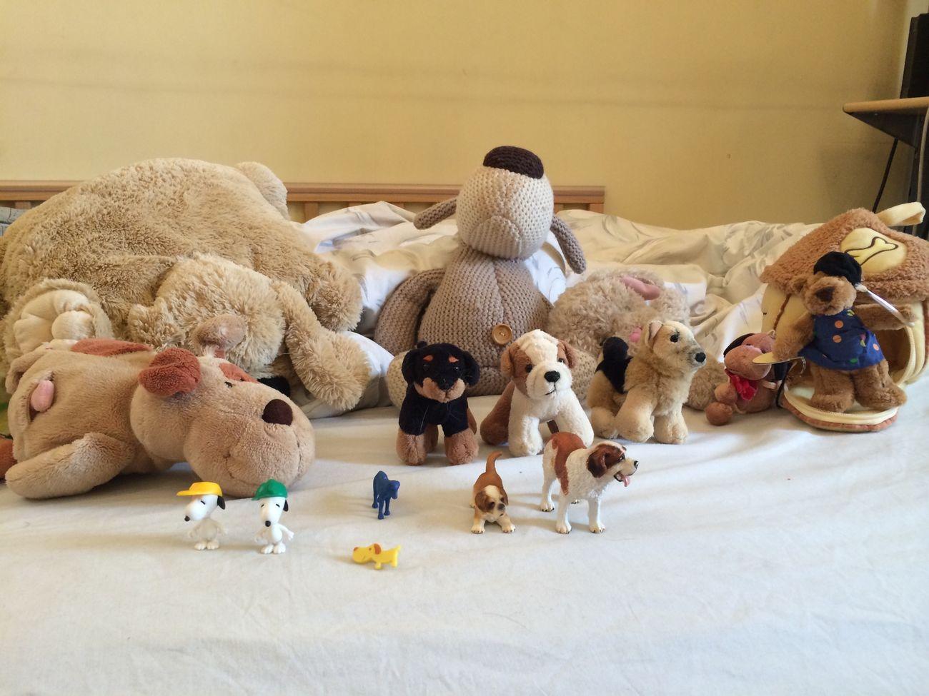 Наша собачья коллекция - 16 штук! тематическая неделя Dogs развивашки