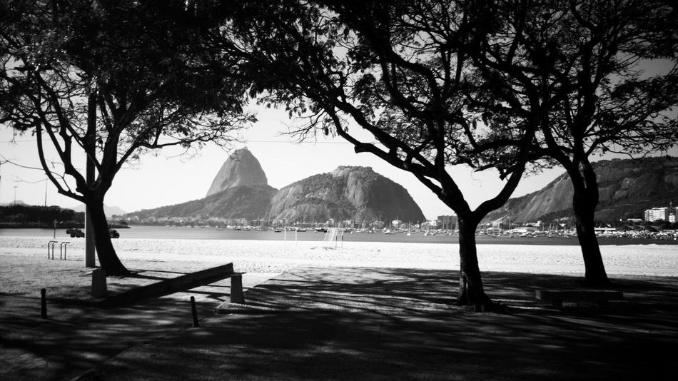 Tree Nature Outdoors No People Mountain Travel Destinations Black & White Black And White Blackandwhite EyeEmNewHere Welcome To Black Rio De Janeiro Eyeem Fotos Collection⛵ Brazil Natural Beauty Sugarloaf