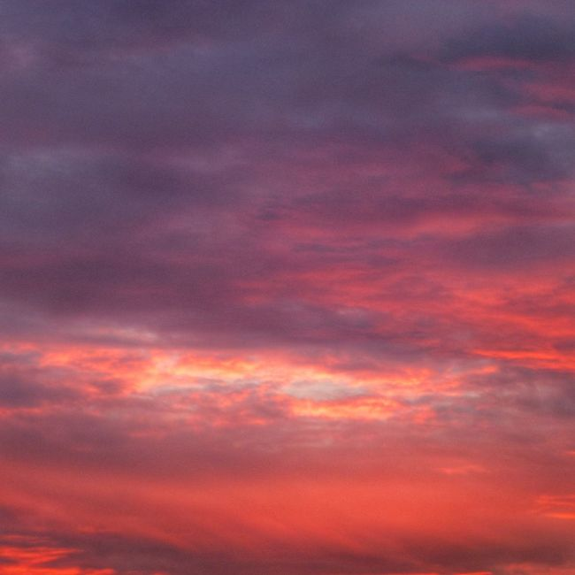 NOVEMBER-SUNSET Sunset Red Sky Colors Of Autumn Autumn Autumn Colors Wonderful