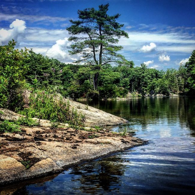 Lake Lake View Summer Trees a:water_collection]ion Sky And Clouds Woods Lakescape Nature Outdoors Outdoor Photography r Reflection Reflection_collection Waterscape Water Reflections